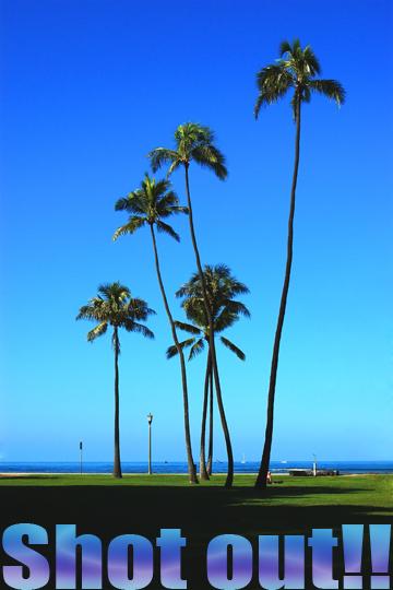 hawaii300sc.jpg