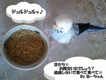 空ちゃんお食事ちゅう☆