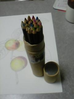 大人の塗り絵5