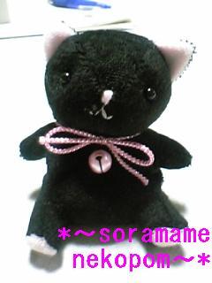 黒猫さん、カワイイ
