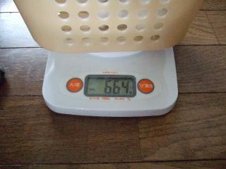 のんちゃんの体重2