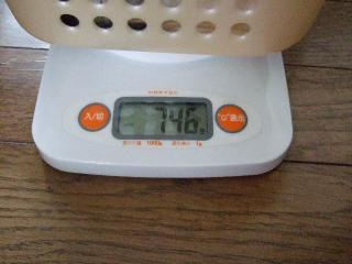 げんちゃんの体重2