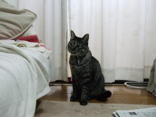 2007_0901(003).jpg