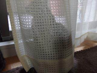 2008_0610cats0053.jpg
