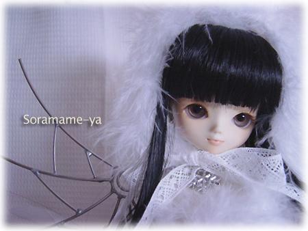 20060312