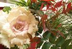 hiranosan2007-12-1.jpg