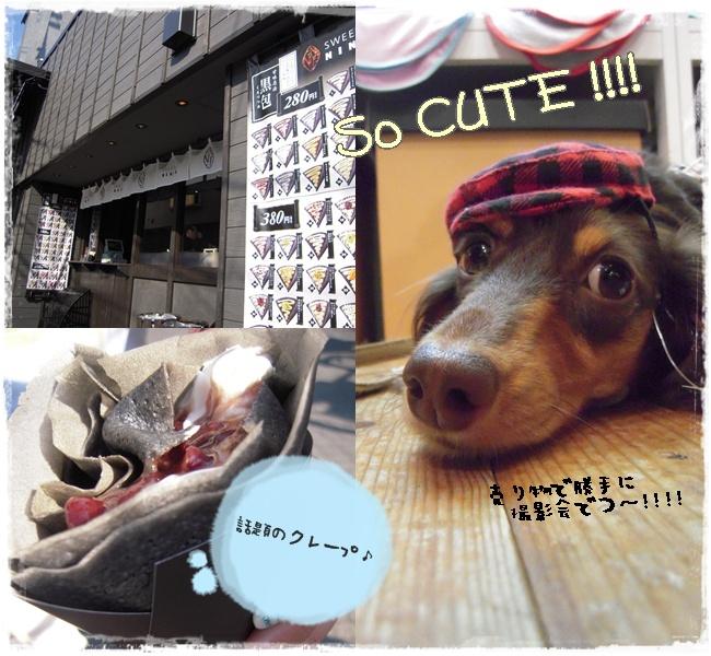 cute_20090923012225.jpg