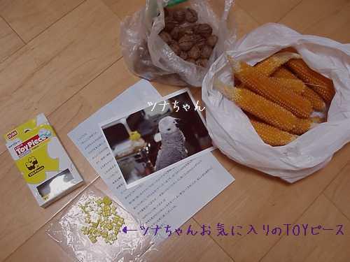 hinomarunosu2008111104.jpg