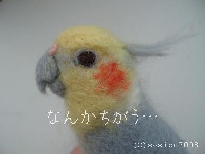 nankachigaunisemonohinomaru01.jpg