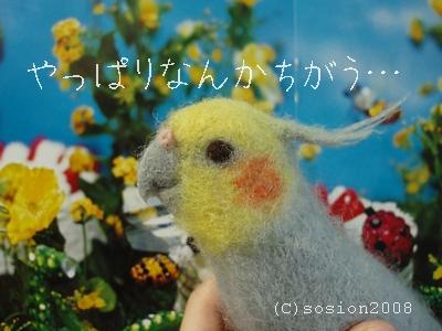 nankachigaunisemonohinomaru02.jpg