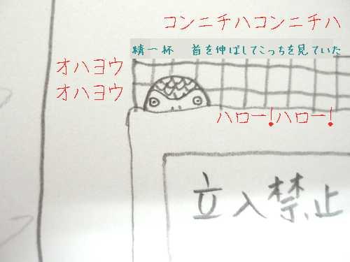 yomogi2008102802.jpg