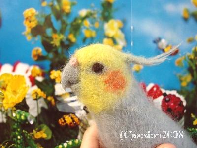 youmouhinomaru2008073101.jpg