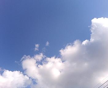 20051119203328.jpg