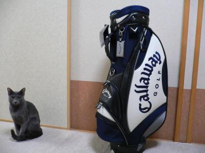 golfbag1.jpg