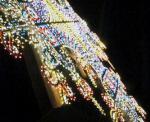 2005東京駅前のミレナリオ