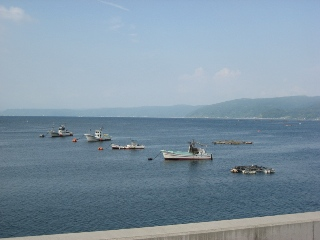 穏やかな海の風景 2008.8.24