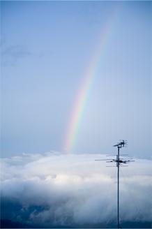 久しぶりの本格的な雨・・・