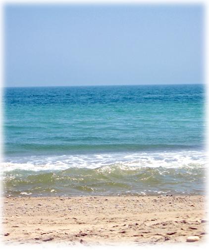 海水浴? 砂浜散策?