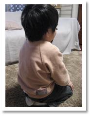 正座して背筋を伸ばして座るとんきち。