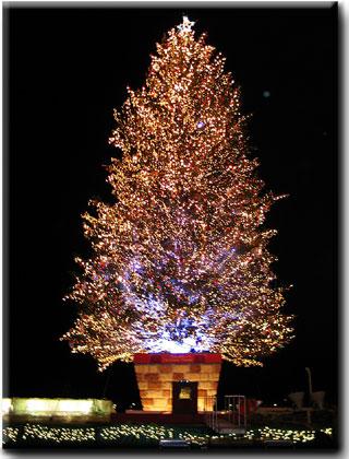 函館クリスマスファンタジー