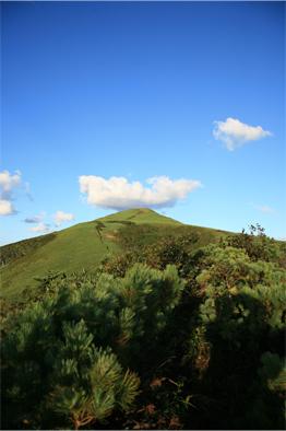 礼文岳山頂を望む