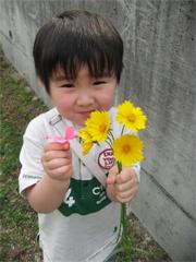 出会った花ととんきち