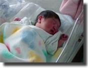 生まれて2日目のとんきち・・・