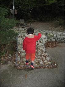 とんきちの強い決意を信じての登山 第一歩・・・