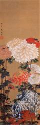 kikuzu1.jpg