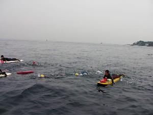 力泳中blog1