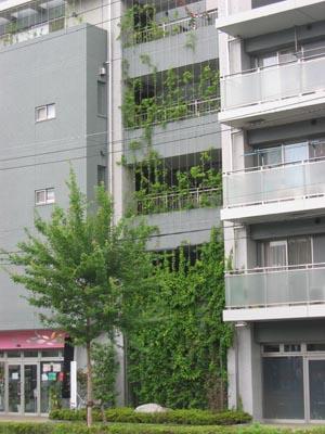 町田のマンション
