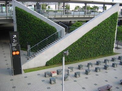 階段の壁面緑化