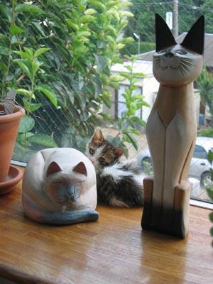 木彫り猫に隠れて