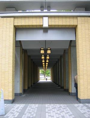 A学院列柱