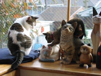 猫に紛れる