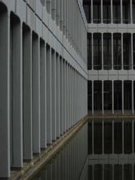 目黒区役所池越に見る2