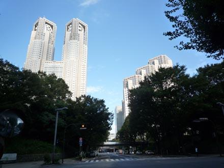 新宿公園の緑と都庁