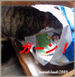 blog122508_20091228211547.jpg