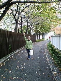 20071117231319.jpg