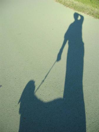 長い影、朝日を浴びて・・・