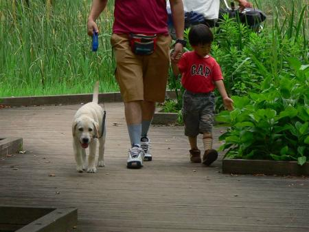 お散歩楽しいなぁ?