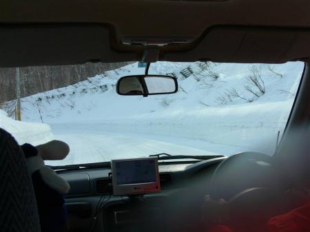 山道はコンナ感じでした