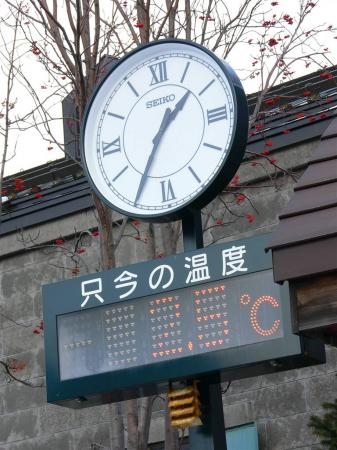 暖冬の影響なのかナ (・・?