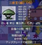 Maple0324.jpg