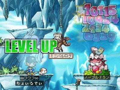 Maple1400.jpg