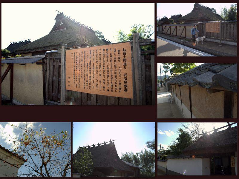 091012sasayama11.jpg
