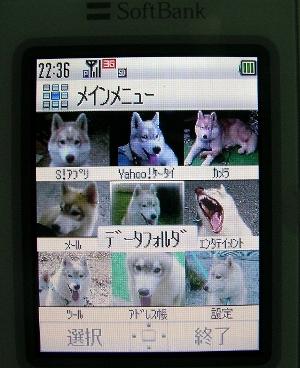 T080310-2.jpg