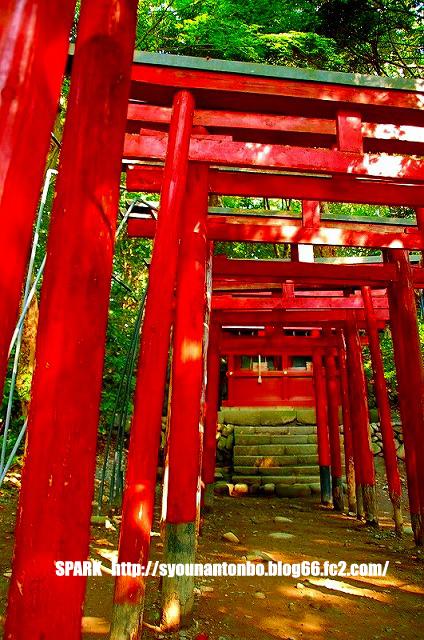 そうだ、京都へ行こう・・・みたいな