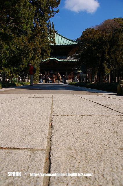 鎌倉で第一位のお寺さんです