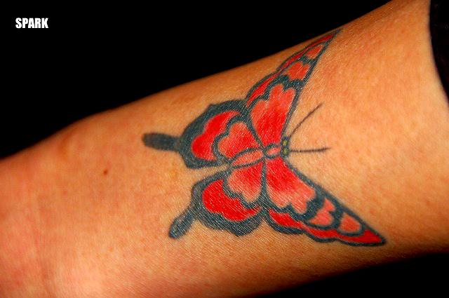 蝶がとまってた